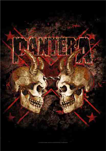 Buy Double Skull by Pantera