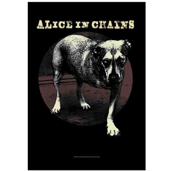 Alice In Chains Grin
