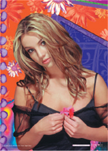 Buy Flowers Flag by Britney Spears