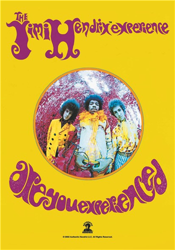 Buy Are You Experienced Flag by Jimi Hendrix