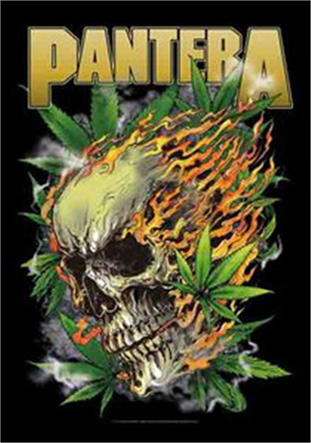 Buy Skull Leaf Flag by Pantera