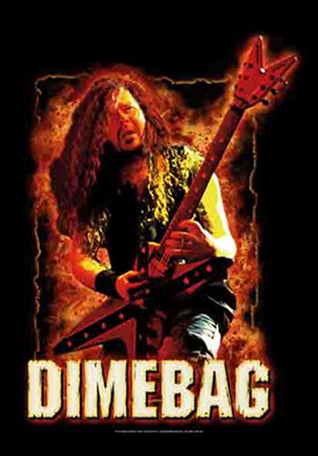 Pantera / Dimebag Fire