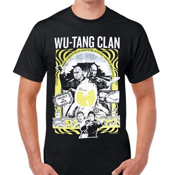 Wu-tang Clan Deadly Needle Kung Fu