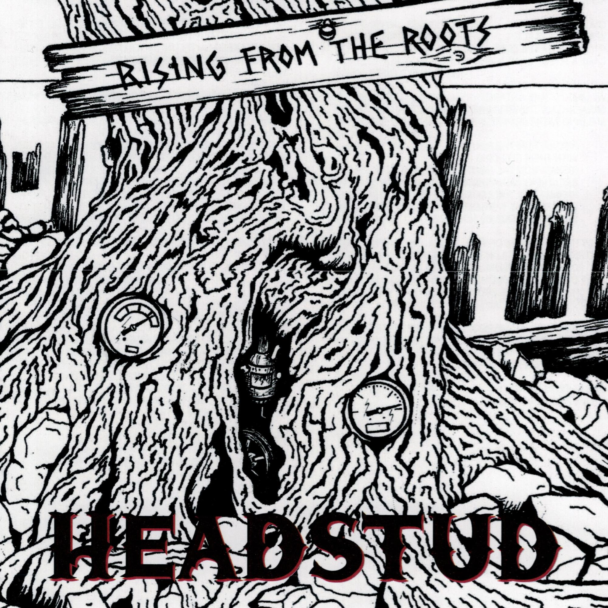 Rising From The Roots CD